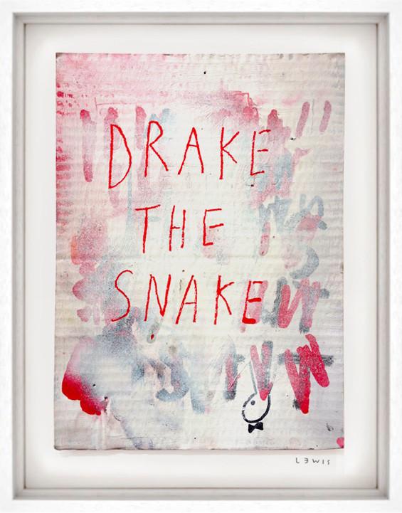 Drake the Snake