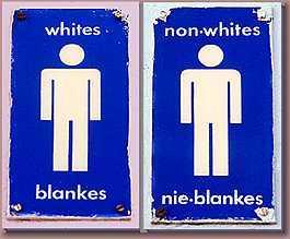 racial segregation research paper