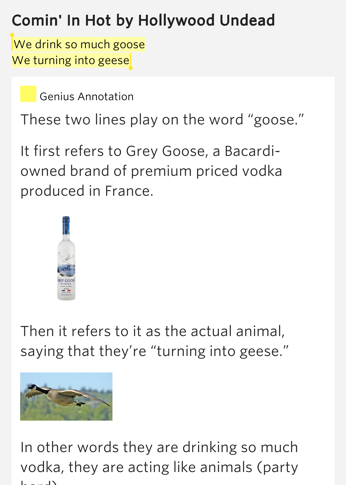 Drink So Much Goose Turning Into Geese