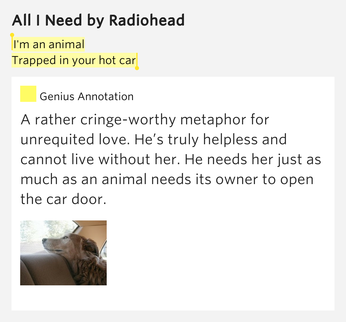I'm An Animal / Trapped In Your Hot Car