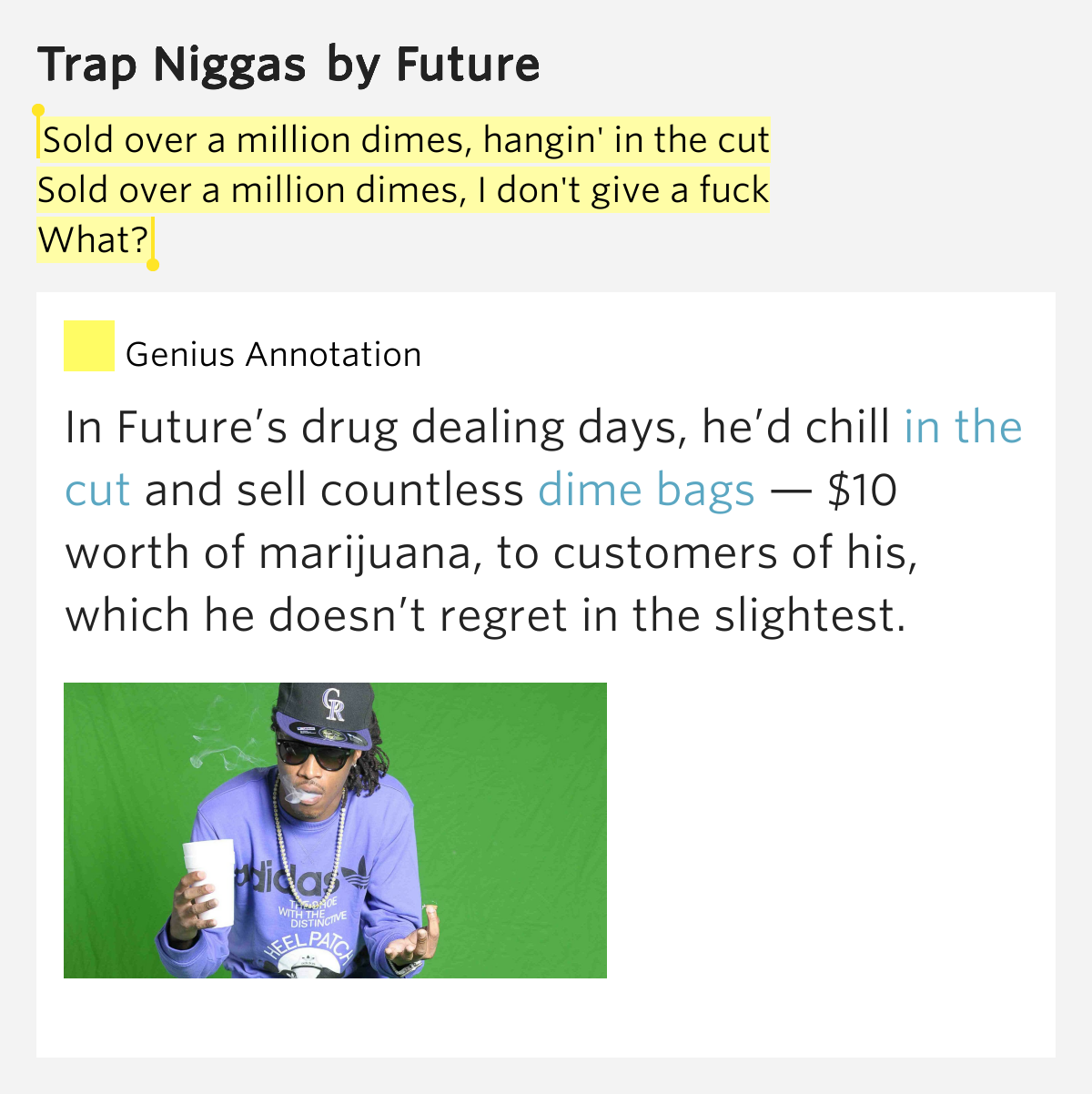 Nigga i dont give a fuck picture 79