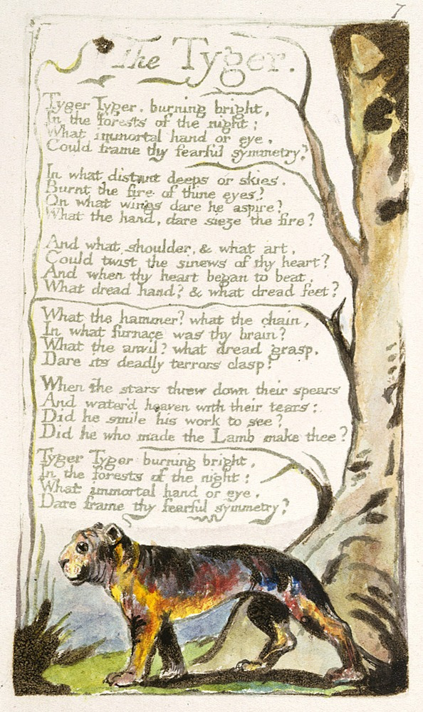 a personal annotation of the tyger a poem by william blake A descriptive analysis of the poem, 'the tyger' by william blake speaking sequence: vinay- introduction, stanza 1&6 shi ru- summary and stanza 2 michelle- t.