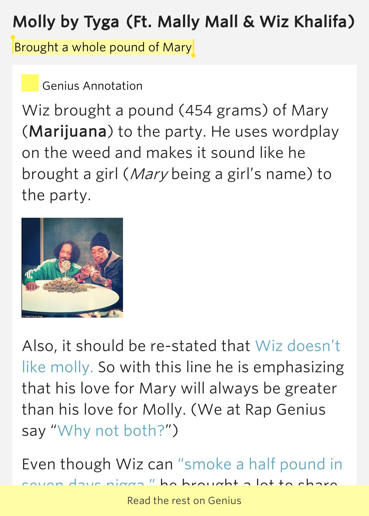 brought   pound  mary molly  tyga Wiz Khalifa Ft Snoop Dogg Weed Lyrics