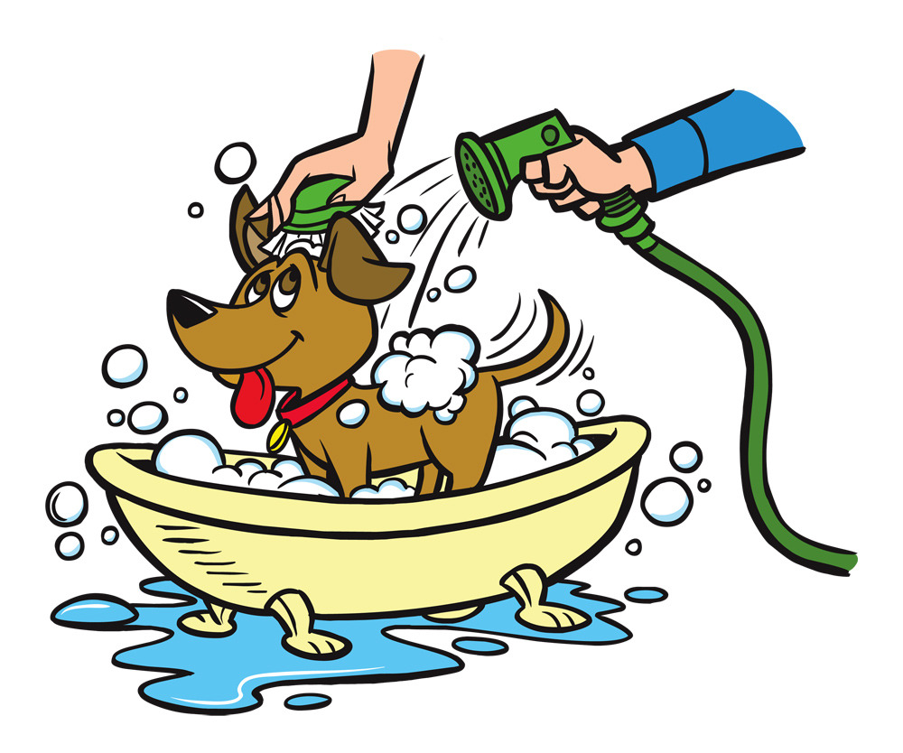 Business Plan for a dog wash.............?