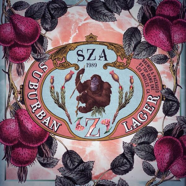 Image result for sza z album