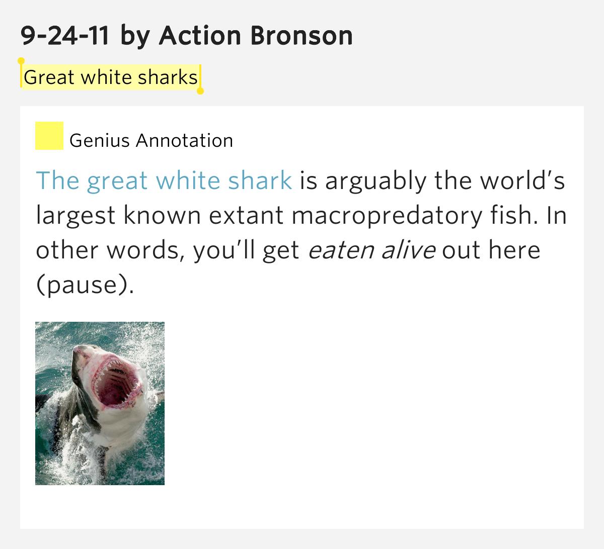 ACTION BRONSON - 9-24-11 LYRICS - SONGLYRICS.com