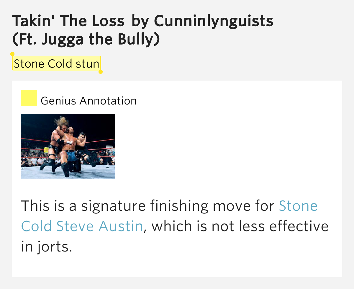 Stone Cold Steve Austin   Songs   AllMusic