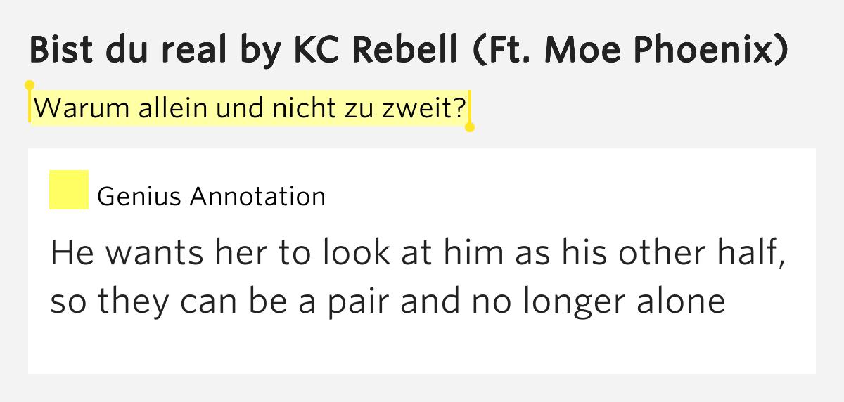 Nicht allein lyrics