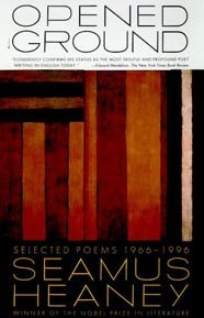 dichotomy in seamus heaneys poetry essay Essay on dichotomy in seamus heaney's poetry - dichotomy in seamus  heaney's poetry how much does an artist's life affect the art they produce one's  art.