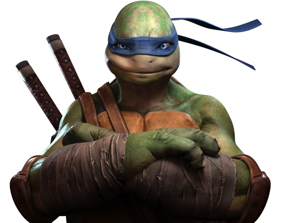 Ninja Turtle Meme Ninja Turtles vs Teen Titans