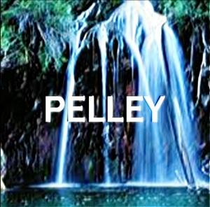 PELLEY's photo