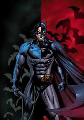 Nightwing's photo