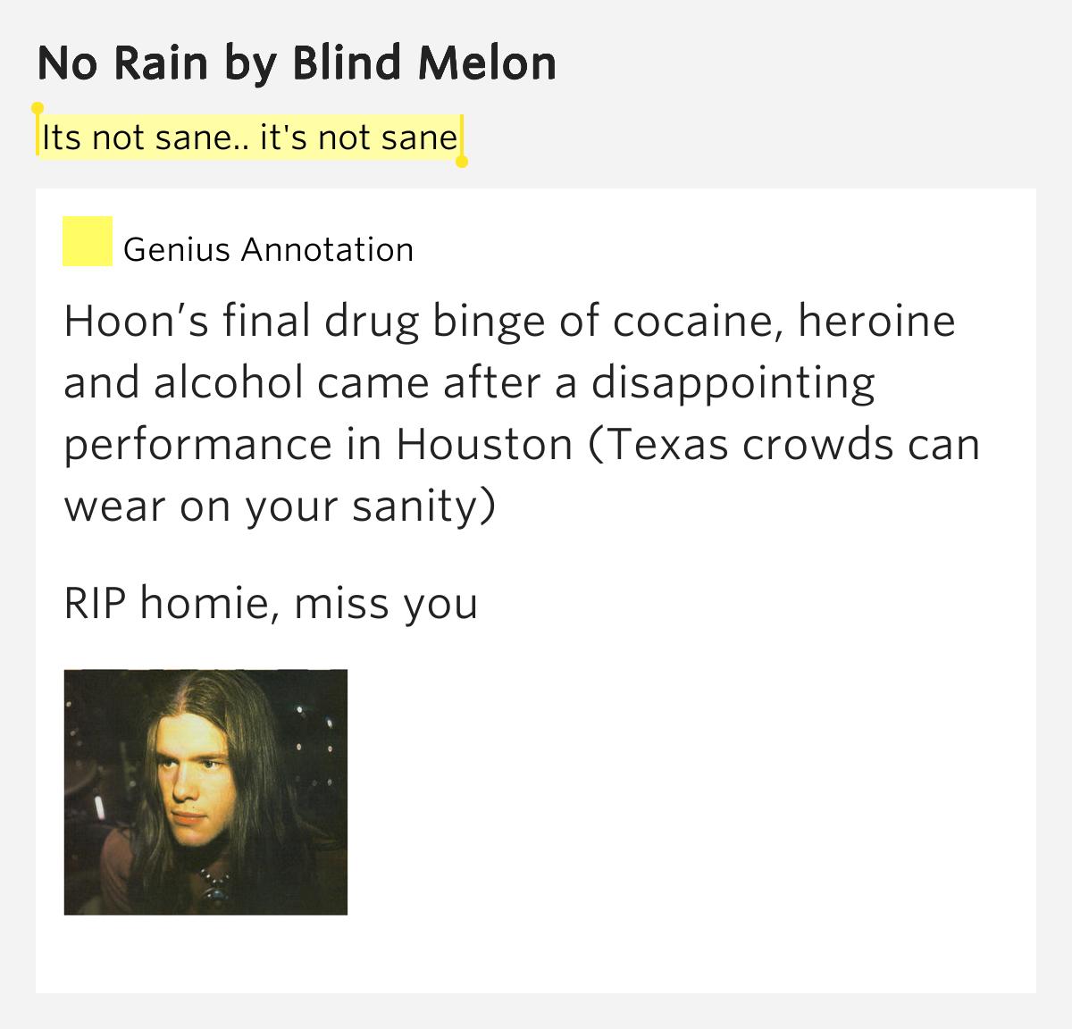 Its Not Sane It S Not Sane No Rain By Blind Melon