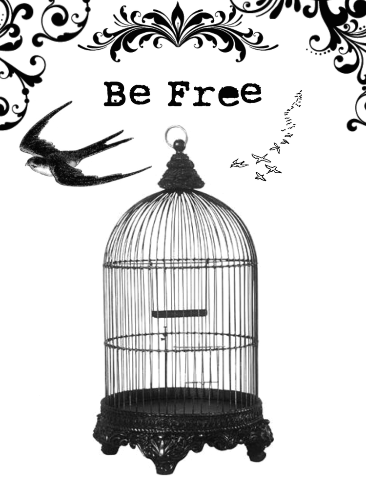 caged birds without a song An acclaimed american poet, storyteller, activist, and autobiographer, maya angelou was born marguerite johnson in st louis, missouri angelou has had a broad career.