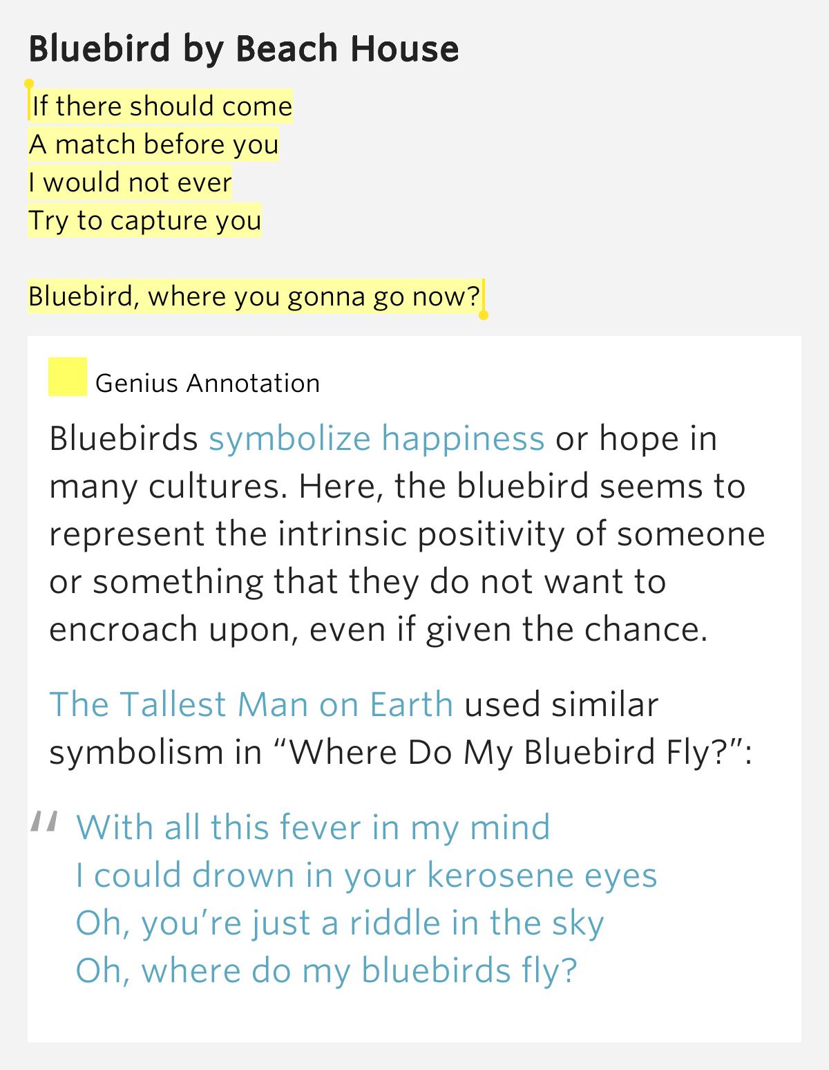 Nirvana - Lithium - Lyrics analysis and meaning   Scenario ...