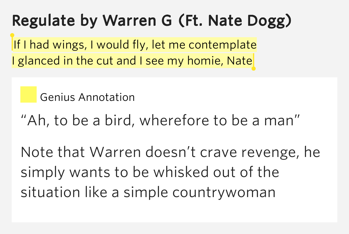 essay on if i had wing and i could fly