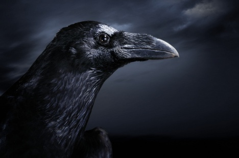 the raven himself was hoarse analysis 4 to question them further, they made themselves air,  the raven himself is  hoarse  51 pall thee in the dunnest smoke of hell: wrap yourself in the blackest .
