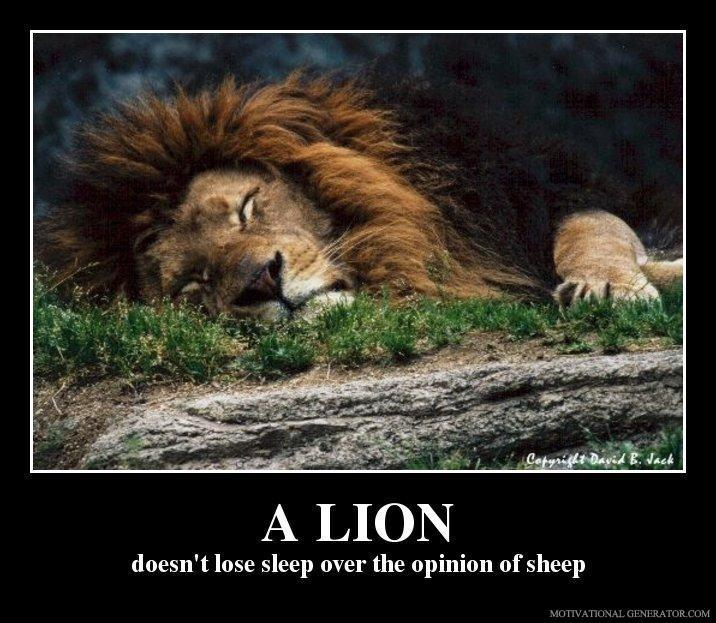 Lion Sheep Quote: A Sheep Doesn't Lose Sleep Over The Opinion Of The Lions