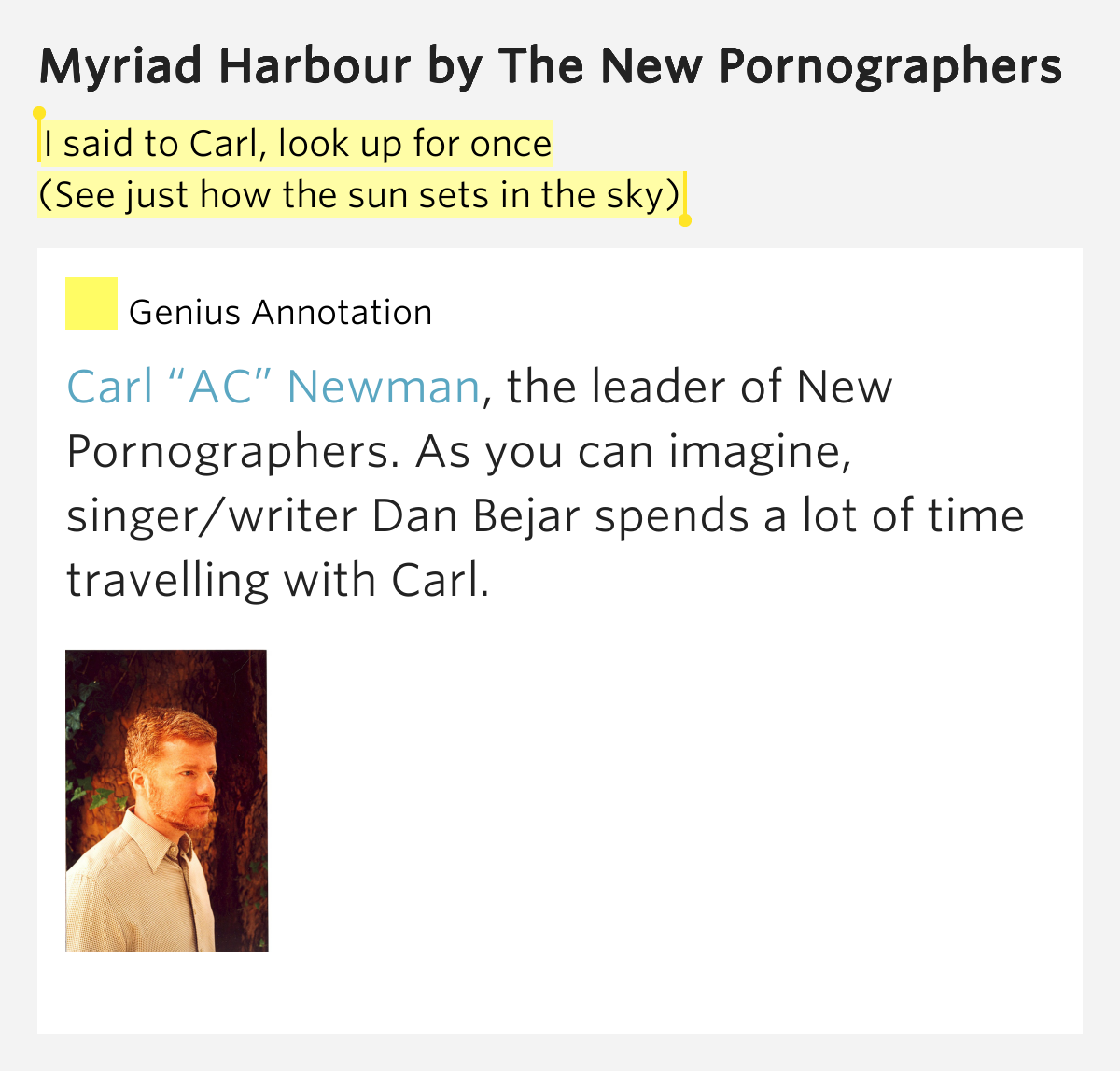 The new pornographers myriad harbor