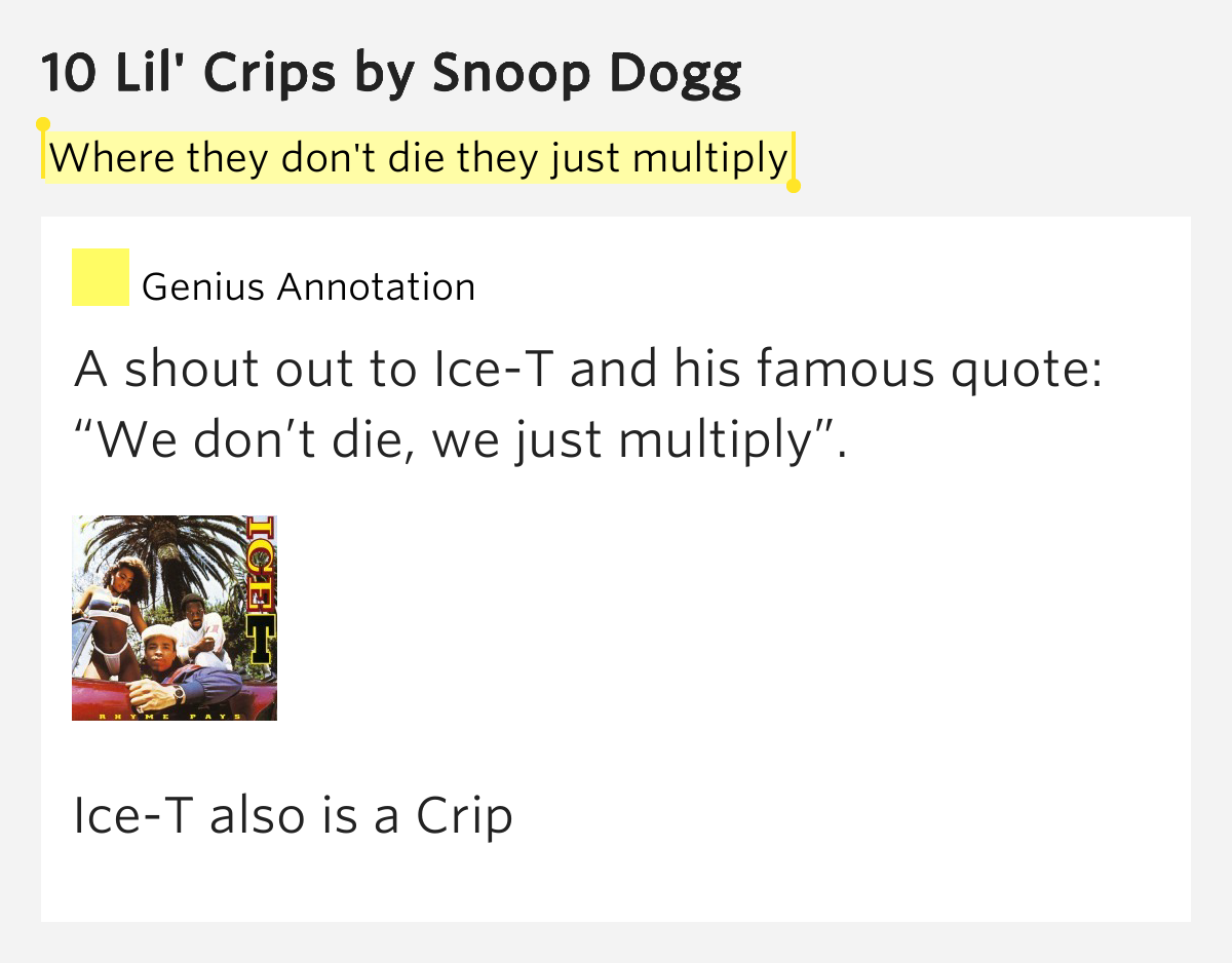 Snoop dogg- 10 lil' crips lyrics - YouTube