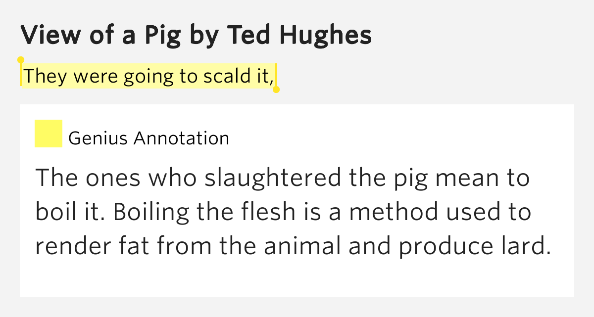 ted hughes view of a pig essay Ted hughes poetry view of a pig view of a pig lesson ted huges, fishing and poetry: click here her husband analysis by martyn crucefix analysis.