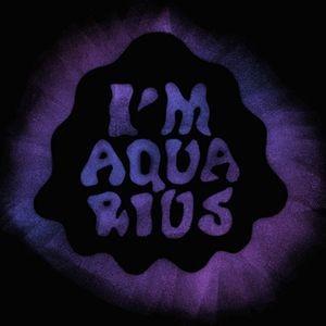 Metronomy Im Aquarius Lyrics
