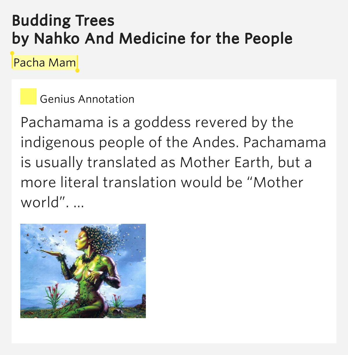 Budding trees lyrics beatiful tree budding trees lyrics image mag hexwebz Image collections