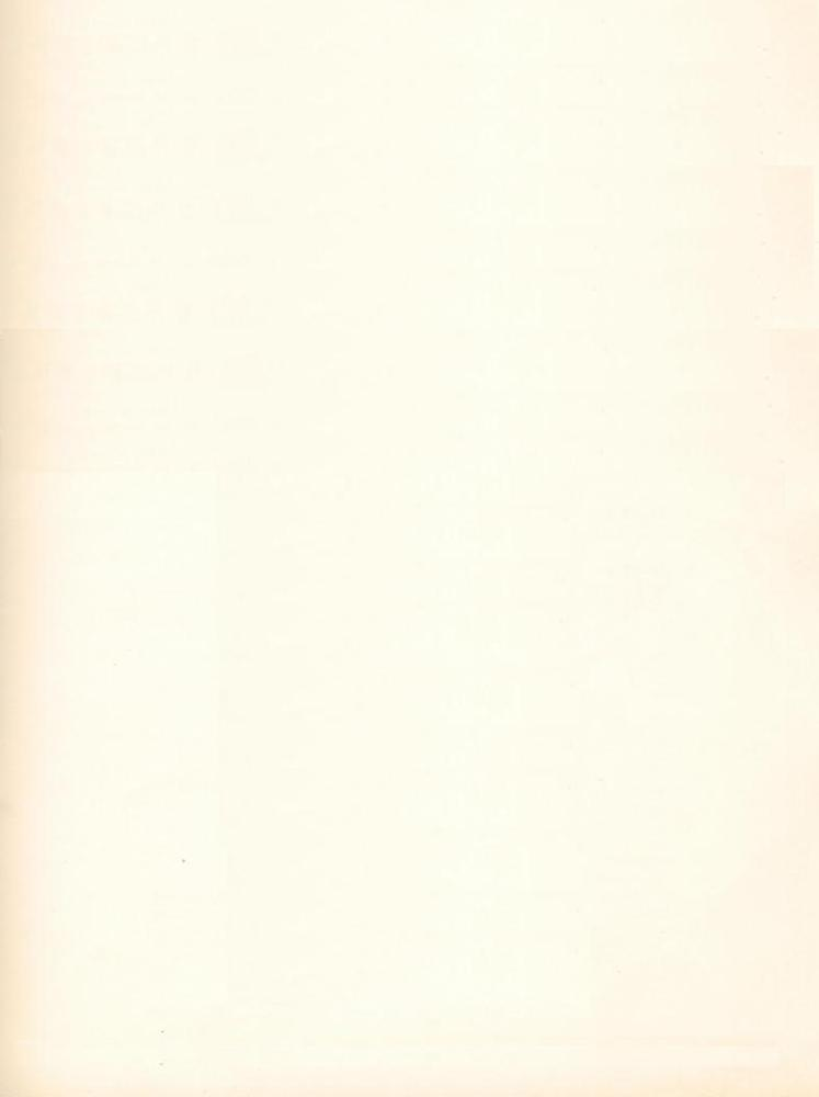 mumford sons white blank page lyrics genius lyrics