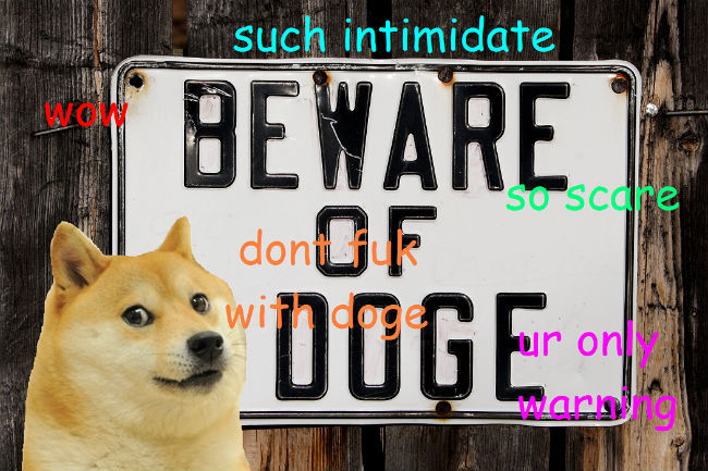 The doge meme is not funny genius this is the only meme i find hilarious no explanation needed you need to lower your standards when it comes to what you find funny stop taking life so solutioingenieria Choice Image