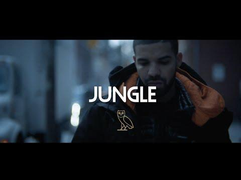 Drake – Jungle Lyrics | Genius Lyrics