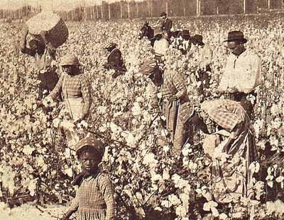 """slavery american institution Many southern christians felt that slavery, in one baptist minister's words, """"stands  as an institution of god  christian masters provide religious instruction for their  slaves  american slavery: how bad was it subscriber access only."""
