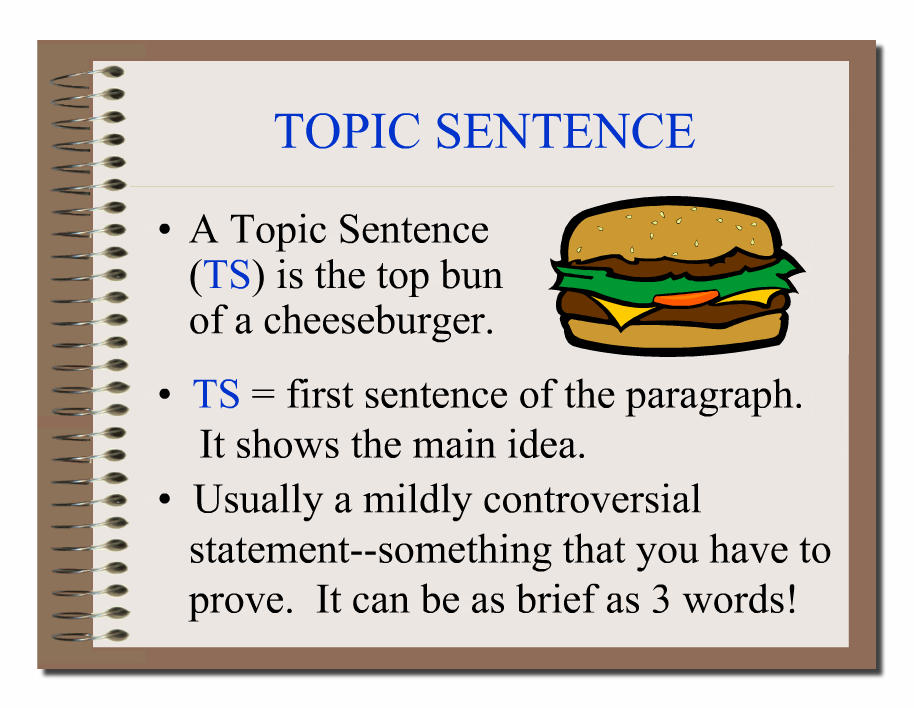 Commentary sentences in essay