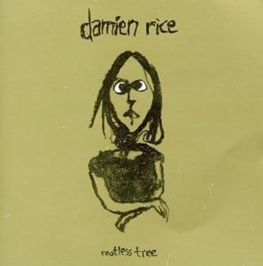 Cover art for Rootless Tree by Damien Rice
