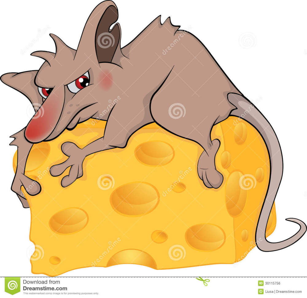 clipart mouse eating cheese - photo #50