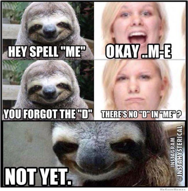 Sexual harassment sloth meme