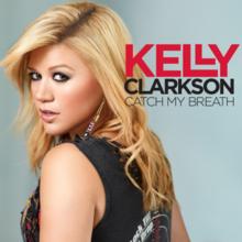 kelly-clarkson-i-do-not-hook-up-lyrics-ubersetzung-weird-objects-up-girls-pussy