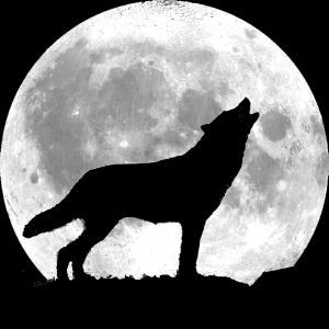 Howling At The Moon übersetzung