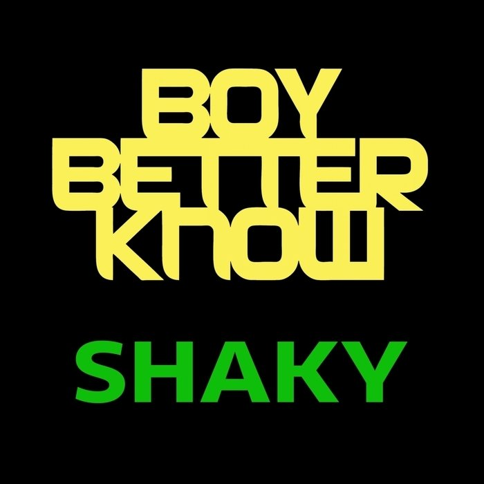 Lyric f the police lyrics : DJ Maximum – Shaky Lyrics | Genius Lyrics