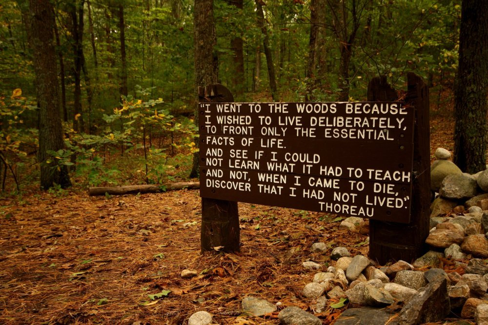 thoreau essay where i lived and what i lived for Thoreau's allusions are numerous, and many of them are rooted in ancient history and greek mythology in where i lived, and what i lived for, he writes, olympus is.