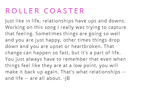 roller coaster relationship meaning