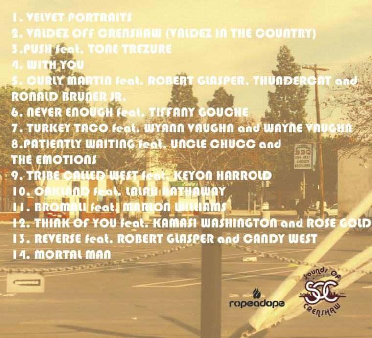 Cover art for Velvet Portraits [Track List] by Terrace Martin