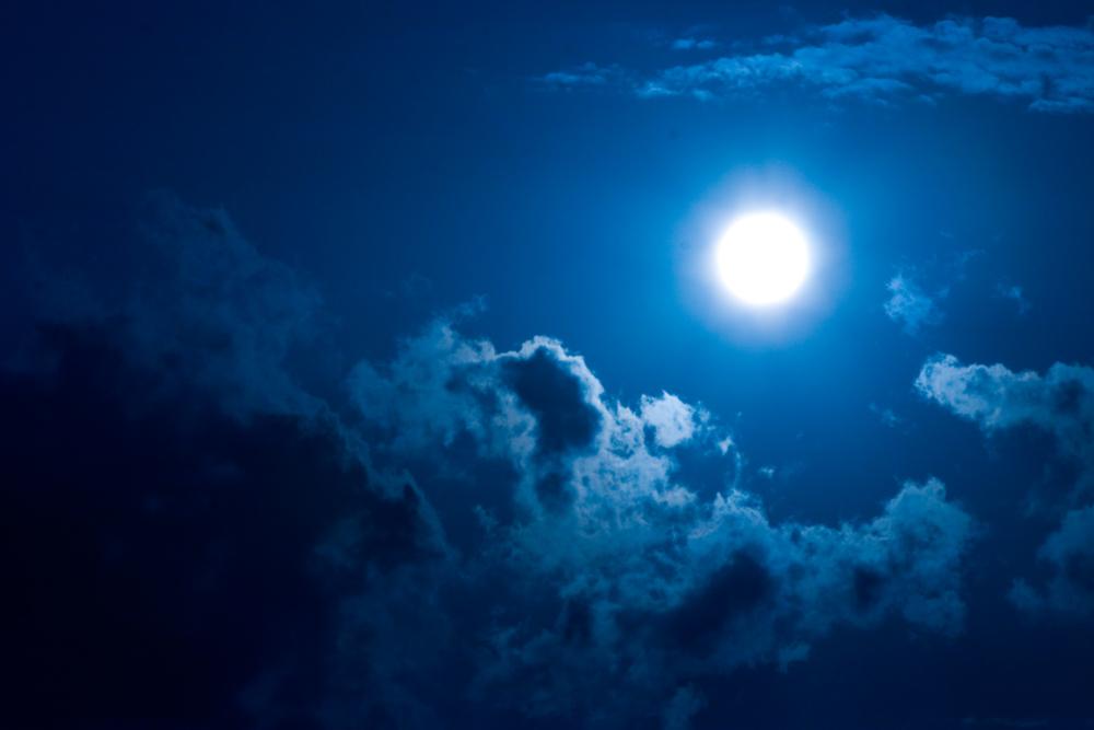 Lou Gramm – Midnight Blue Lyrics | Genius Lyrics