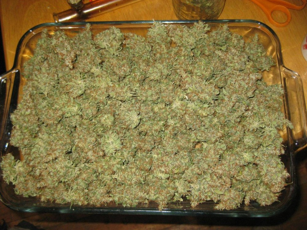 how to pack a bowl of weed
