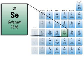 Mister Molato Periodic Table Genius