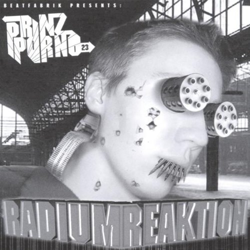prinz nachtaktion lyrics