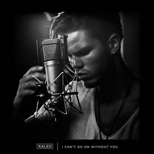 Cover art for I Can't Go On Without You by KALEO