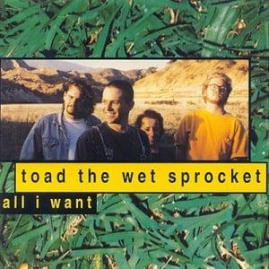 Download mp3 full flac album vinyl rip All I Want - Toad The Wet Sprocket - All I Want (Vinyl)