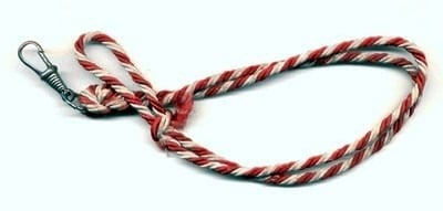 """the lanyard by billy collins essay Finally, english i students had a practice session for tomorrow's essay test on   english i honors students worked on billy collins's poem """"the lanyard"""" as we."""