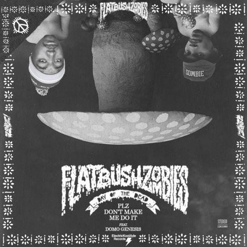 Cover art for Plz Don't Make Me Do It by Flatbush Zombies