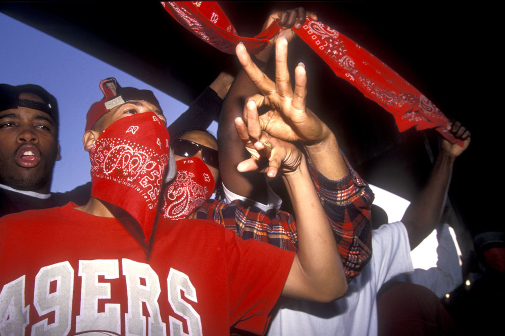 an introduction to the history of one of the most notorious gangs in the united states the crips The crips are one of the largest and most violent associations of street gangs in the united states, with an estimated 30,000 to 35,000 members in 2008 they have been involved in murders, robberies and drug dealing, among other crimes.